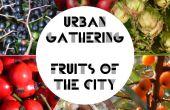 Rassemblement urbain - fruits de la ville