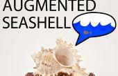 Construisez votre propre auditif Seashell augmentée !