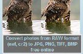 Convertisseur RAW : un logiciel gratuit pour convertir RAW en JPG