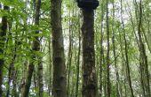 ARUPi - une unité d'enregistrement automatisé Low-Cost pour les écologistes Soundscape