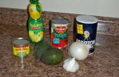 Rapide et facile de Guacamole