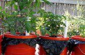 Le Dearthbox : Un planteur automatique d'arrosage, de faible coût