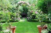Comment faire pour cultiver votre propre jardin d'Eden