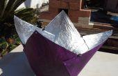 Violet figue cuiseur solaire