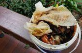 Comment transformer les déchets de cuisine dans les aliments frais avec vermiponics