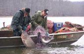 En cours d'exécution un filet maillant à recueillir des échantillons de poissons