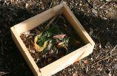 Mini composteur en bois Portable