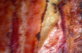 Comment faire un Bacon enveloppé de Monte-Cristo