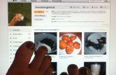 Peindre vos ongles - un guide pour les débutants par un débutant