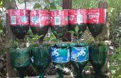 Jardin d'herbes aromatiques de bouteille – un projet de recyclage.