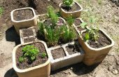Soulevé le jardin d'herbes aromatiques