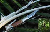 Jungle survie - aliment - palmier chou (avec seulement un couteau de poche)