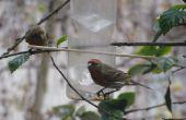 Nourrir les oiseaux - mangeoire à oiseaux Waterbottle