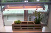 Simple intérieure Herb Garden avec réglable élèvent la lumière