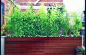 Aménagement de jardin toit NYC - pont contemporain & planteurs