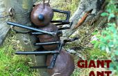 Géocache géant Ant