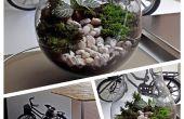Un Terrarium dans une ampoule