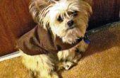 Chaleureux et Cozy Doggy veste faite Simple et pas cher !