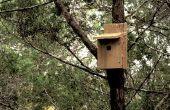 Peu coûteux Bird House - construite à techshop