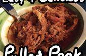 Mijoteuse porc effiloché
