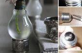 Étonnante ampoule vase