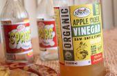 Elixir de vinaigre de cidre de pomme