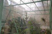 Faire votre propre serre chaude (construction, plante et soins)
