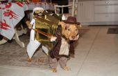 Costume de 2012 de Cody.  Indian Jones et Sallah transportant l'arche