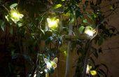 6 conseils choisir l'éclairage solaire de paysage.