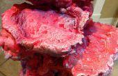 Vaporiser la mousse Coral