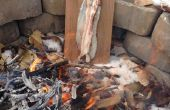 Comment faire cuire le feu de camp sur planche poisson