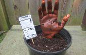 Zombie dans une Pot-A Fun Prop/décoration