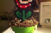 Comment faire une plante Piranha avec un tube