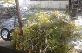 Playhouse branche tissé : quoi faire avec une branche d'arbre de délestage ?