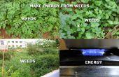 Faire de l'énergie de mauvaises herbes