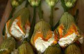 Fiori di Zucca ripieni ~ rempli de fleurs de courgettes