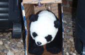 Comment attraper un Panda