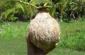 Enveloppe une noix de coco ; Lait de noix de coco