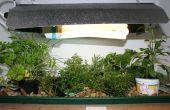 Indoor Grow espace bureautique Partie 1
