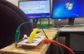 Utilisez les MaKey MaKey faire bricolage technologie d'assistance pour l'accès à l'ordinateur