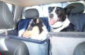 Hamac de voyage chien !
