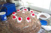 Gâteau de portail (pas un mensonge)