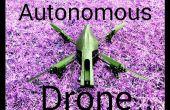 Perroquet autonome AR Drone volant 2.0