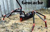 Araignée géocache