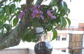 Fleur de pot avec ampoule