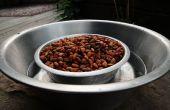 Combiner le bol de nourriture et d'eau chien pour se défendre contre les fourmis. Garder des fourmis de nourriture pour chiens.
