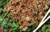Salade (laitue non-wrap Wraps) de poulet chinois