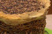 314 couche chocolat-noisettes Baklava Pi(e)