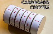 Carton Cryptex Safe !
