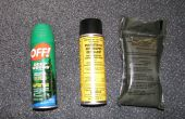 Protéger votre auto cet été des insectes